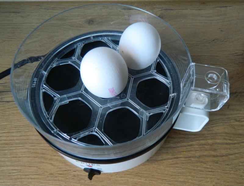 Krups Eierkocher kurz vor dem Einschalten